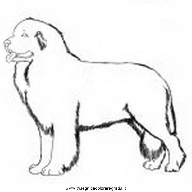 Disegno terranova 2 animali da colorare - Cane da colorare le pagine libero ...