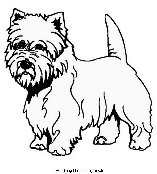 Disegno westie animali da colorare for Westie coloring pages
