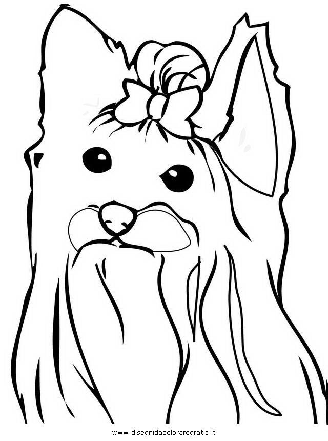 Disegno yorkshire terrier 2 animali da colorare for Cane disegno da colorare