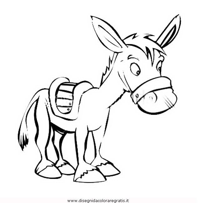 animali/cavalli/asino-5.JPG