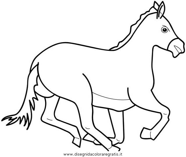 animali/cavalli/cavallo_03.JPG