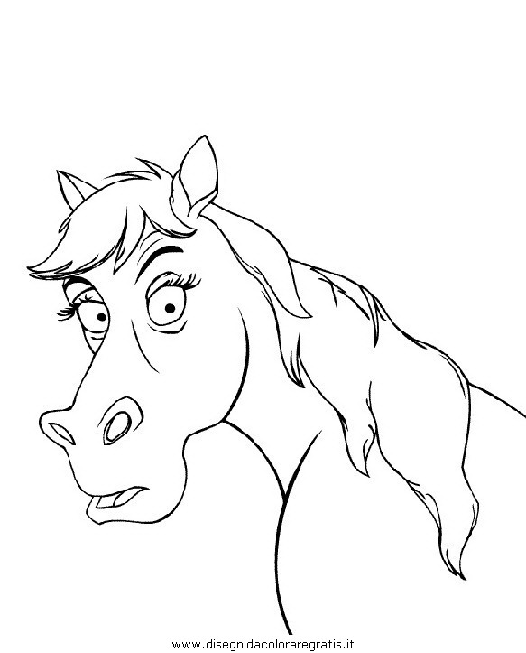 animali/cavalli/cavallo_04.JPG
