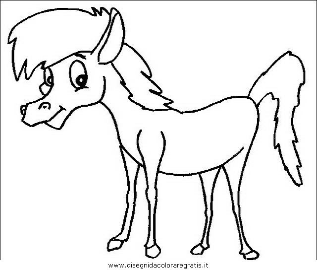 animali/cavalli/cavallo_07.JPG