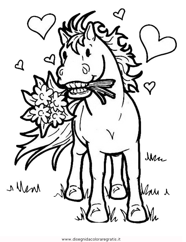 animali/cavalli/cavallo_105.JPG