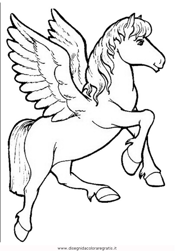 animali/cavalli/cavallo_24.JPG