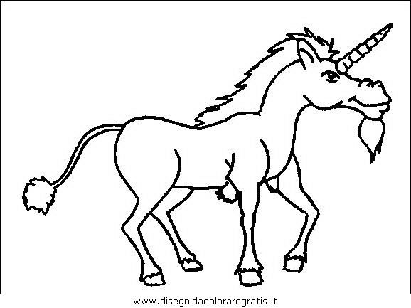 animali/cavalli/cavallo_31.JPG