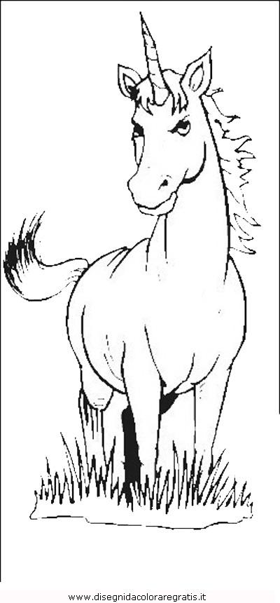 animali/cavalli/cavallo_33.JPG