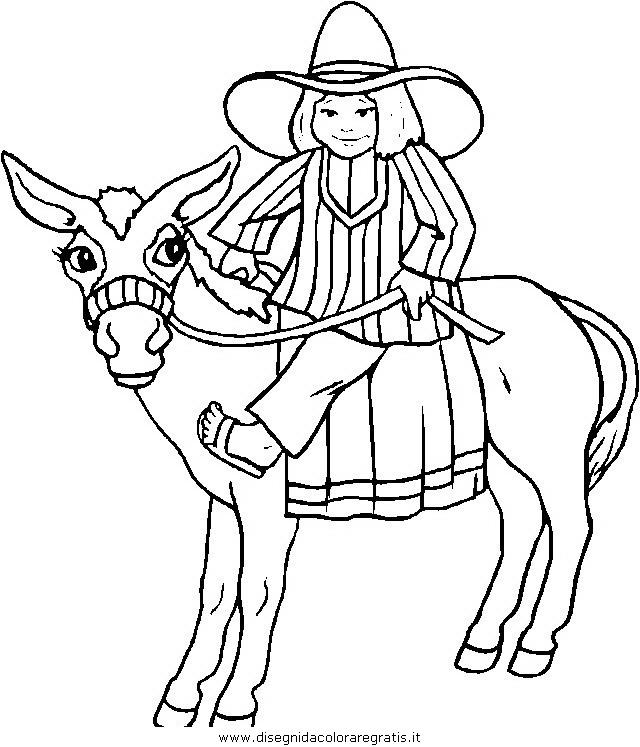animali/cavalli/cavallo_42.JPG