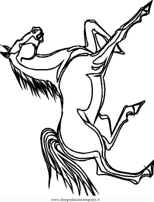 animali/cavalli/cavallo_45.JPG