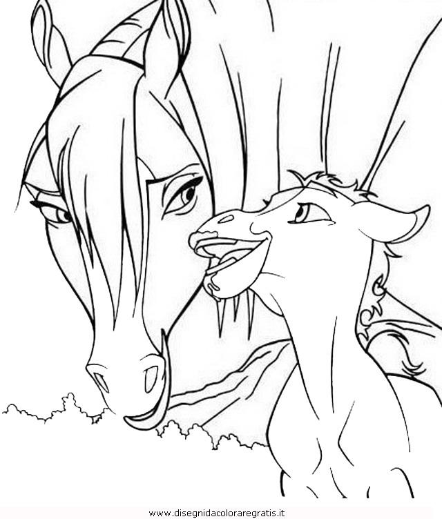 animali/cavalli/cavallo_52.JPG