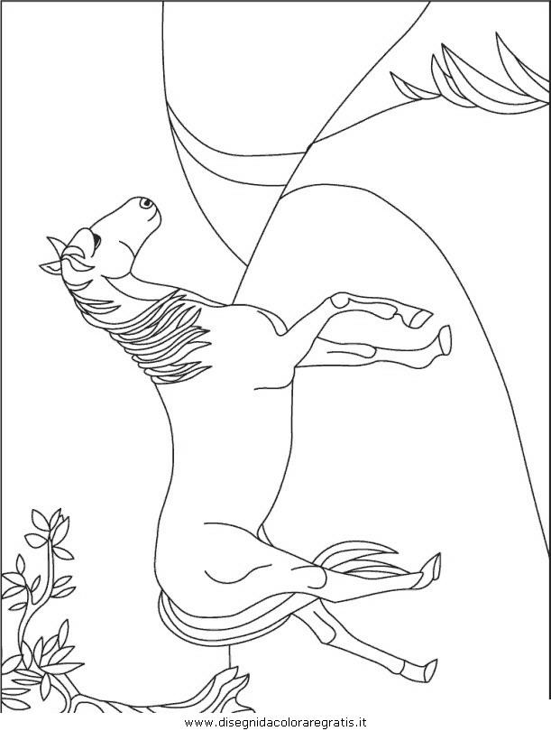 animali/cavalli/cavallo_73.JPG