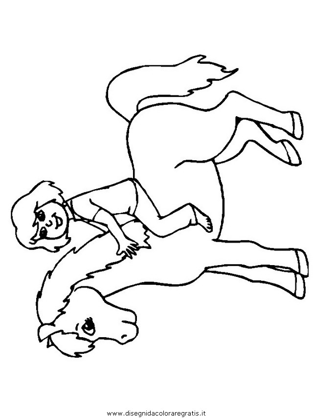 animali/cavalli/cavallo_88.JPG