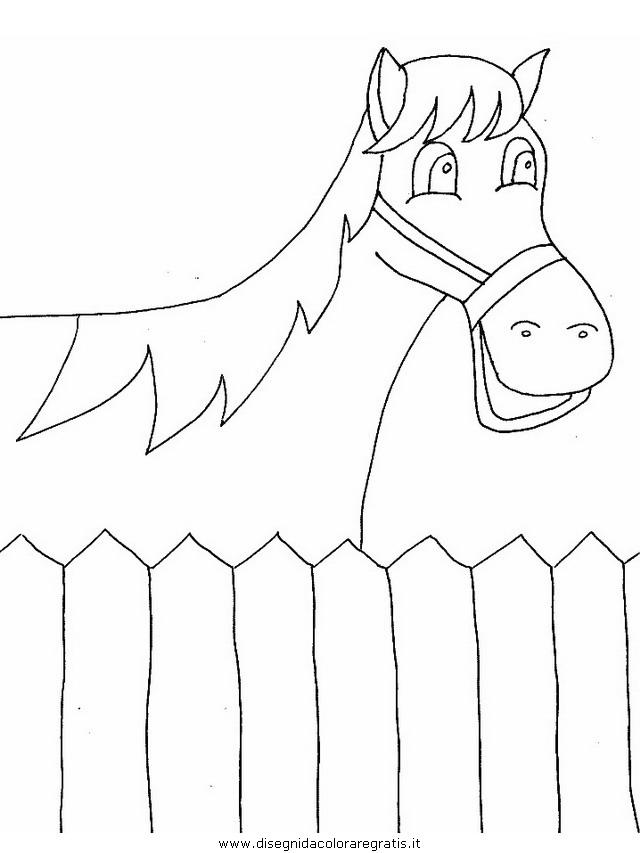 animali/cavalli/cavallo_90.JPG