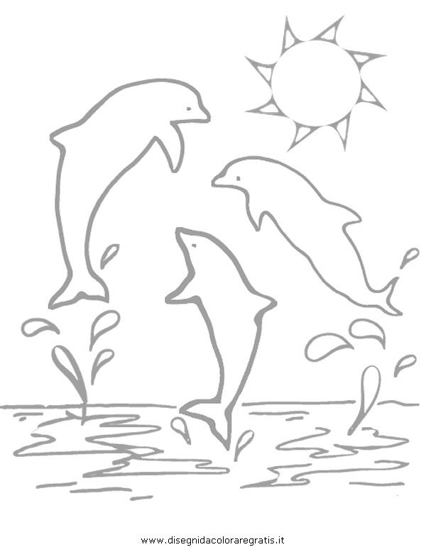 animali/delfini/delfino_delfini02.JPG