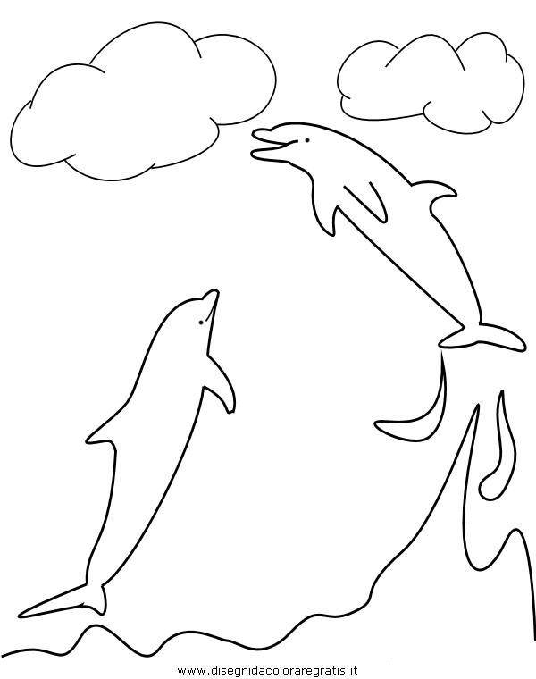 animali/delfini/delfino_delfini04.JPG