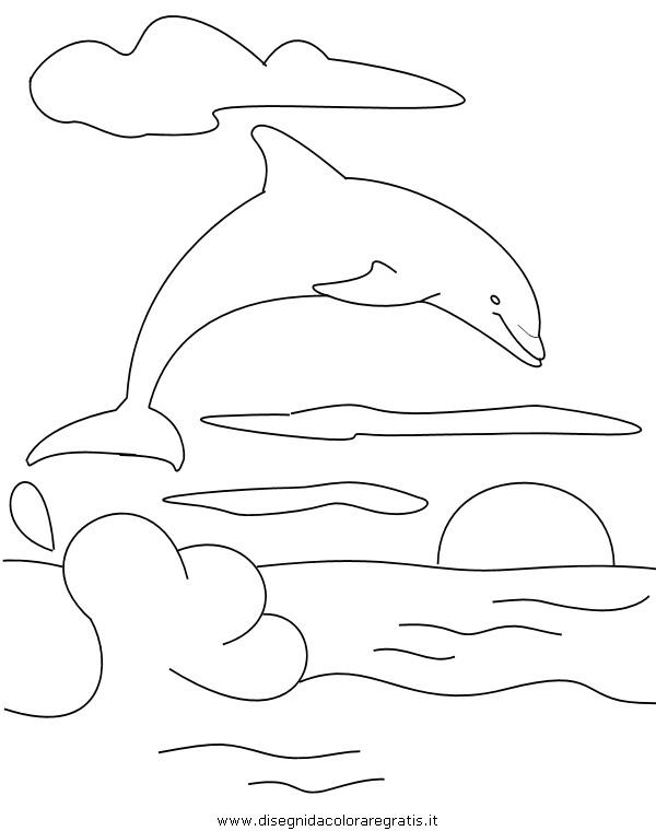 animali/delfini/delfino_delfini07.JPG