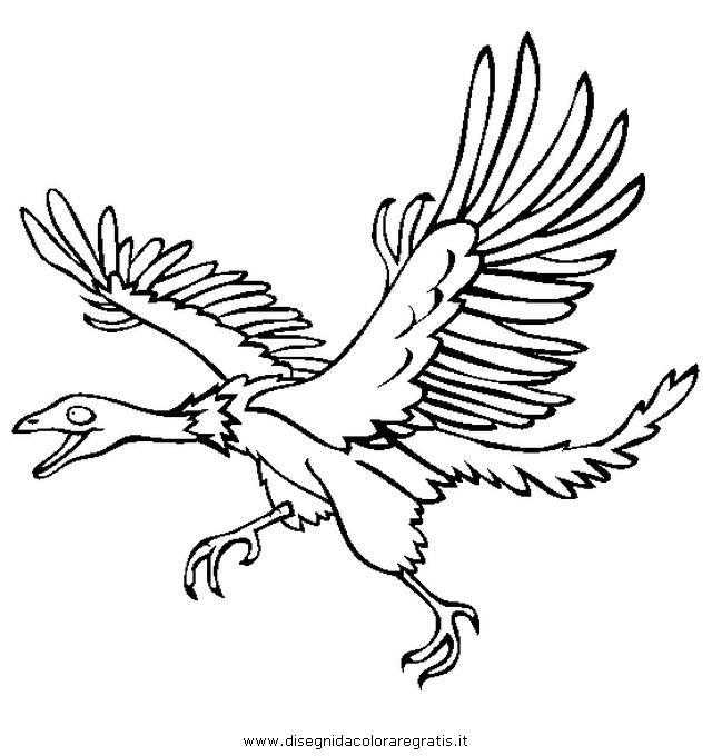 animali/dinosauri/Archeopteryx.JPG