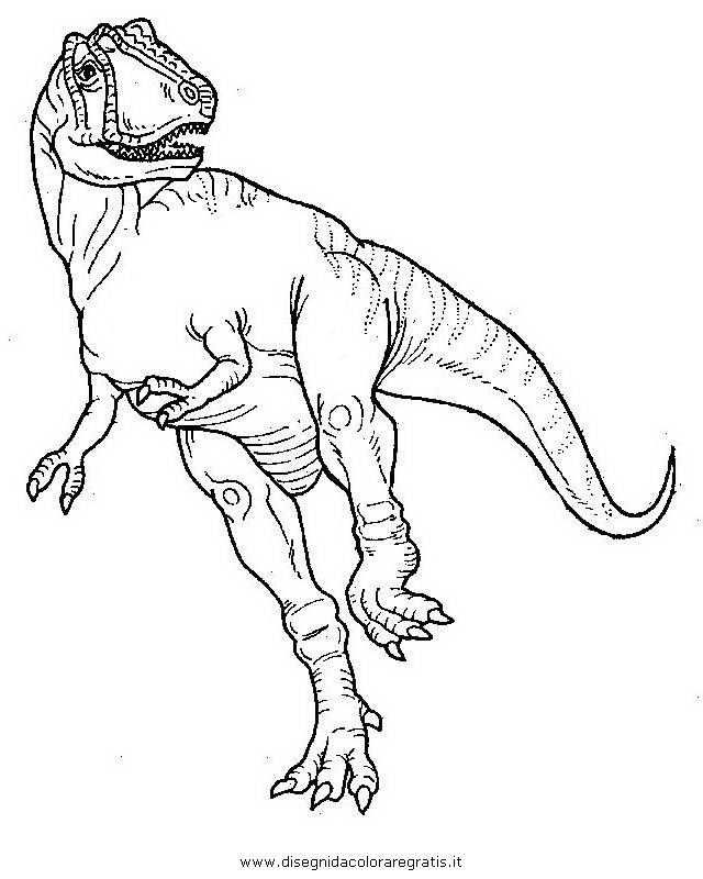 animali/dinosauri/albertosauro.JPG