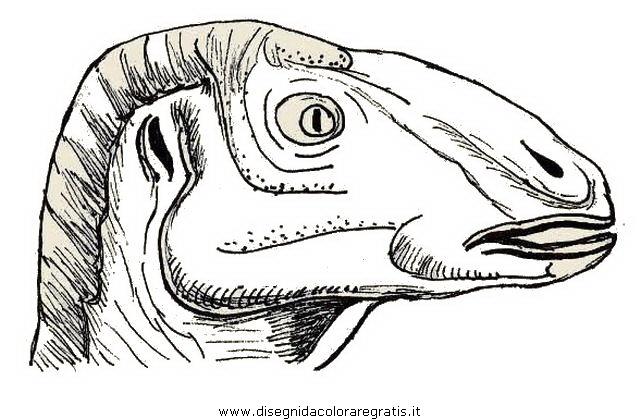 animali/dinosauri/anatosauro.JPG