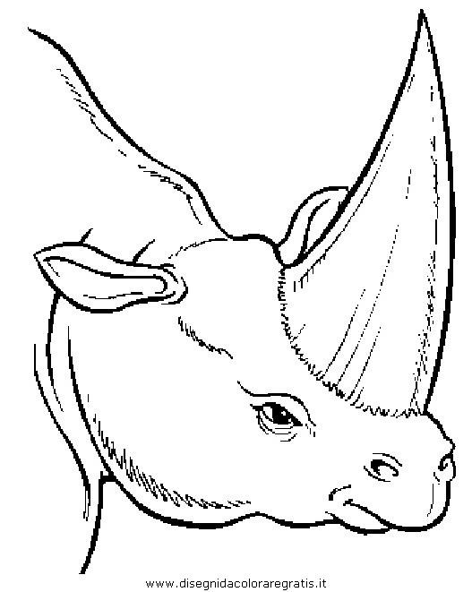 animali/dinosauri/dinosauro_092.JPG