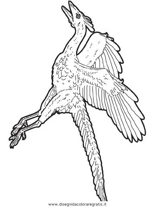 animali/dinosauri/dinosauro_165.JPG