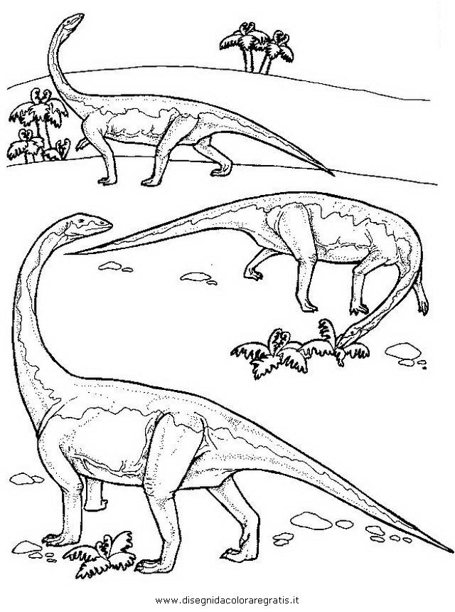 animali/dinosauri/diplodocus.JPG