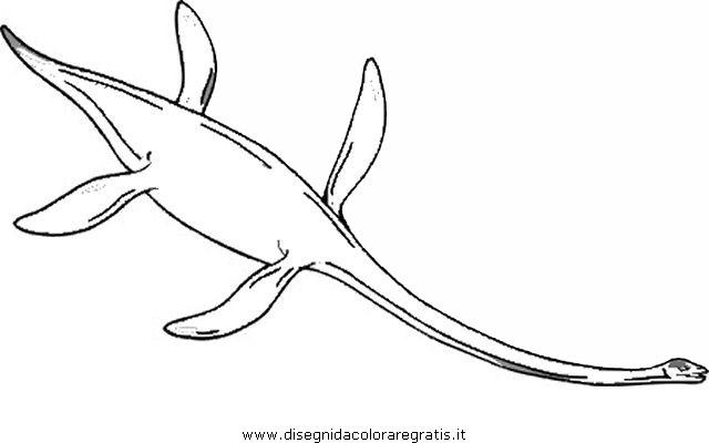 animali/dinosauri/elasmosauro_2.JPG