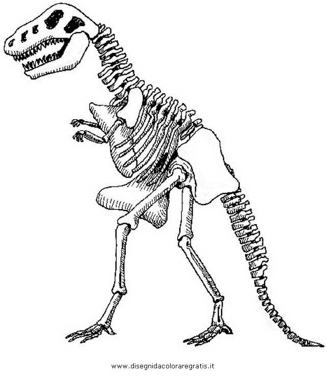 animali/dinosauri/z_dinosauro_scheletro_1.jpg