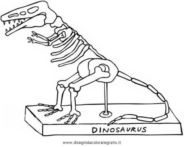 animali/dinosauri/z_dinosauro_scheletro_3.jpg
