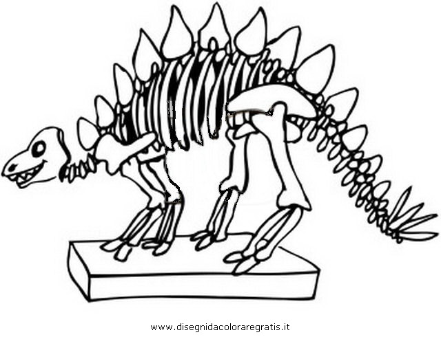animali/dinosauri/z_dinosauro_scheletro_5.jpg
