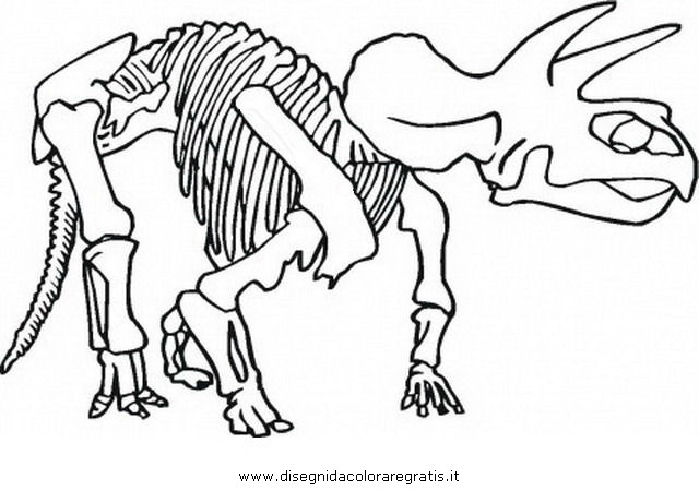 animali/dinosauri/z_dinosauro_scheletro_6.jpg