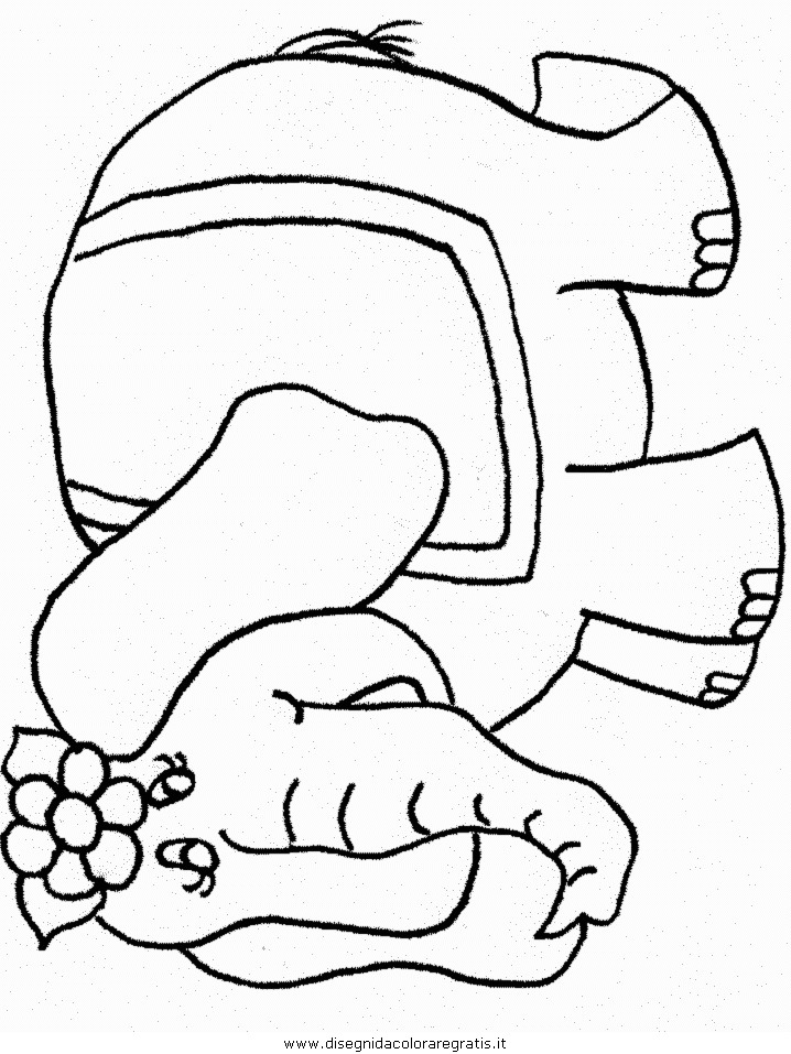 animali/elefanti/elefante_08.JPG
