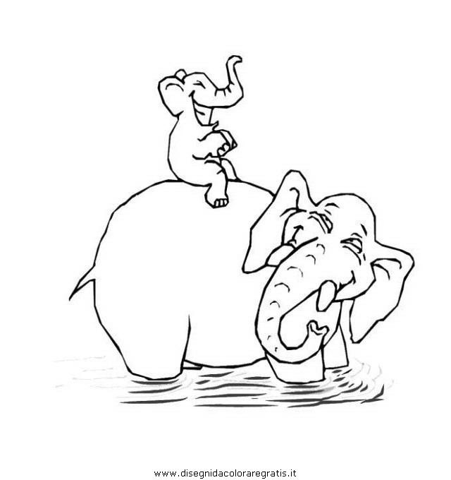 animali/elefanti/elefante_12.JPG