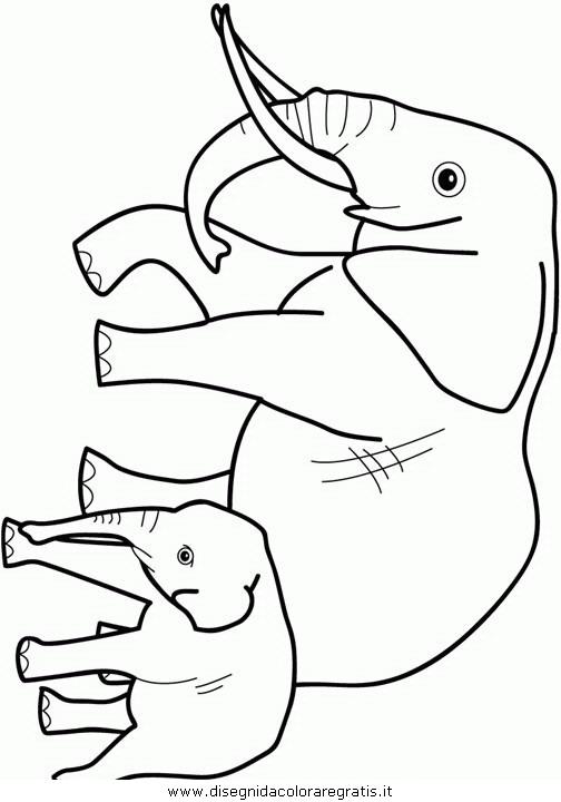 animali/elefanti/elefante_17.JPG