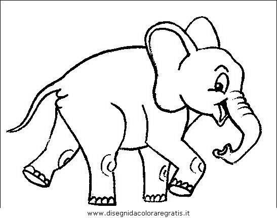 animali/elefanti/elefante_31.JPG
