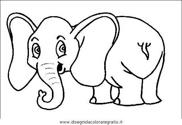 animali/elefanti/elefante_32.JPG