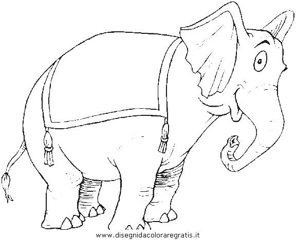 animali/elefanti/elefante_54.JPG