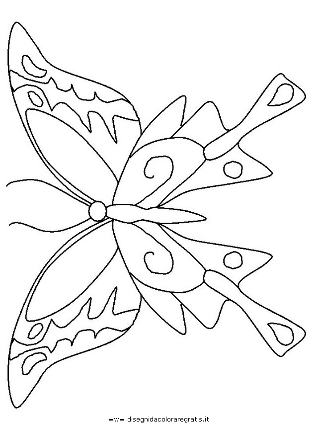 animali/farfalle/farfalla_24.JPG