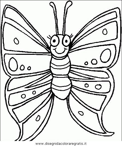animali/farfalle/farfalla_34.JPG