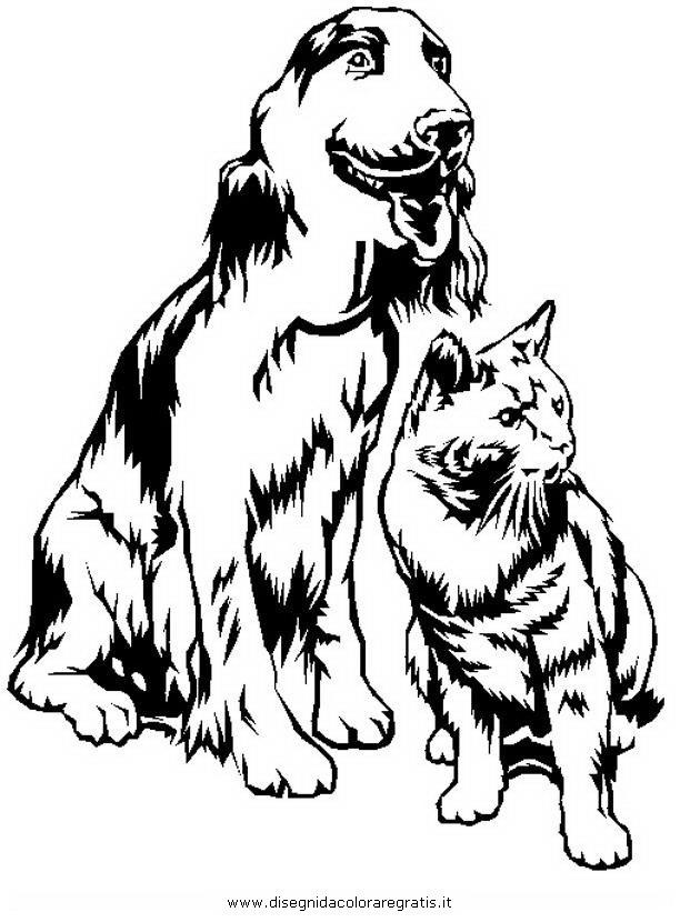 animali/gatti/cane_gatto_16.jpg