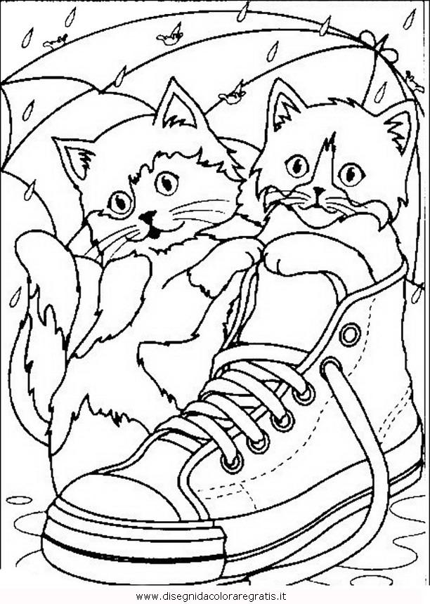 animali/gatti/gatto_019.JPG
