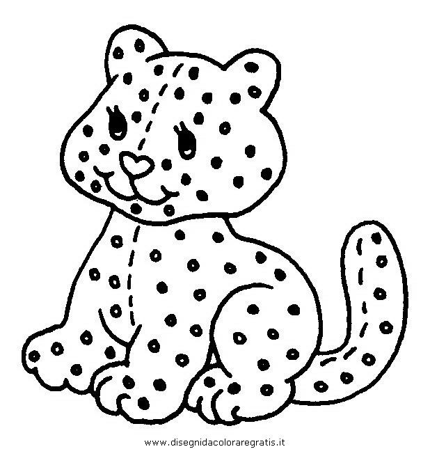 animali/gatti/gatto_046.JPG