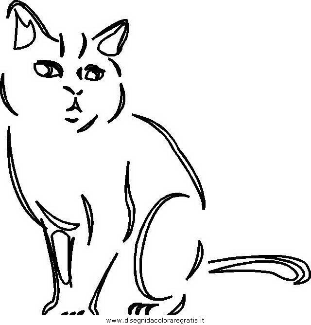 Disegno gatto 053 animali da colorare for Immagini gatti da colorare