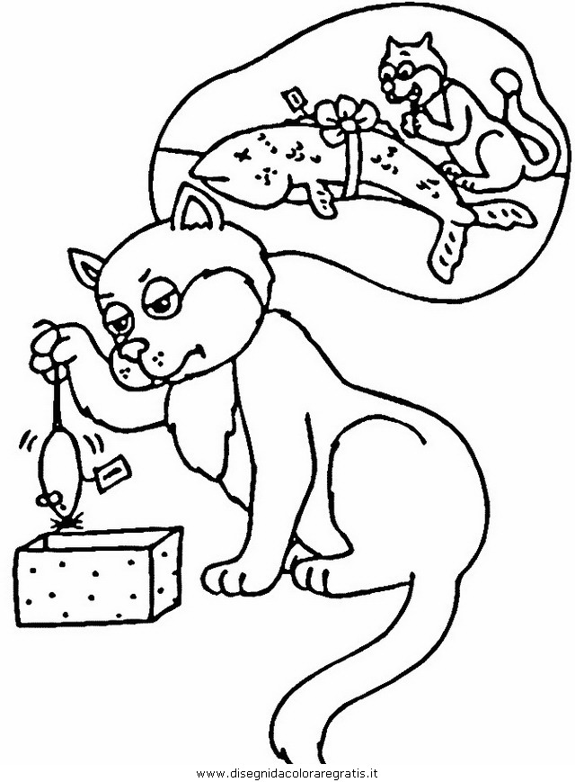 animali/gatti/gatto_077.JPG