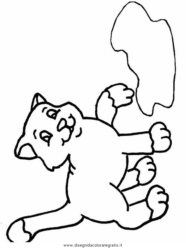 animali/gatti/gatto_085.JPG