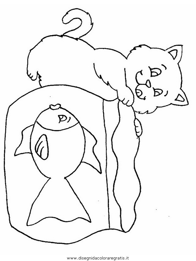 animali/gatti/gatto_088.JPG