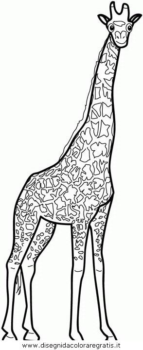 animali/giraffe/giraffa_04.JPG