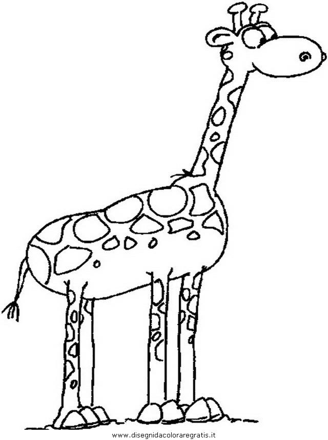 animali/giraffe/giraffa_10.JPG