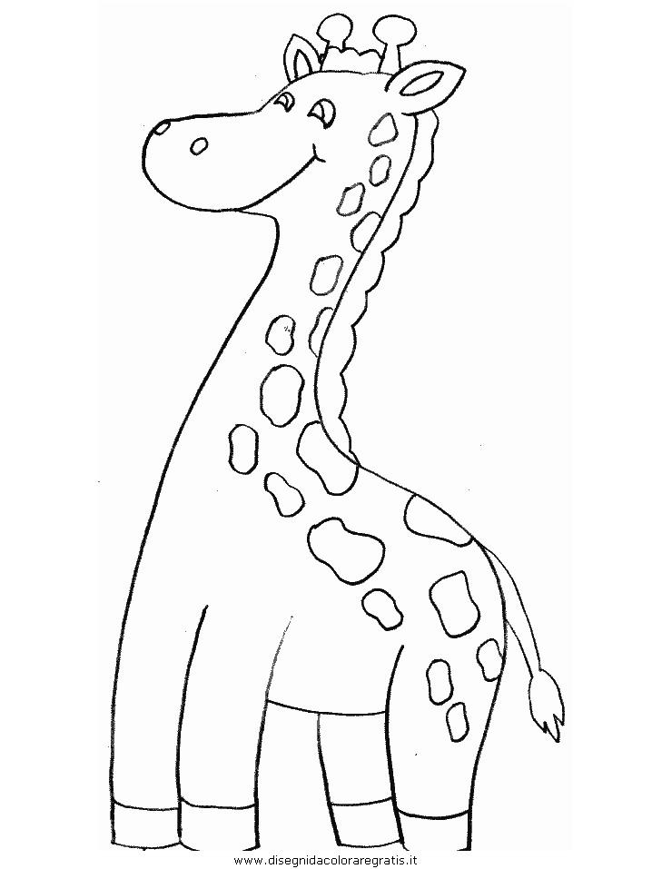 animali/giraffe/giraffa_16.JPG