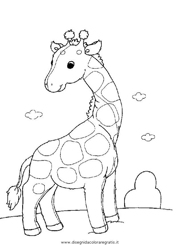 animali/giraffe/giraffa_26.JPG